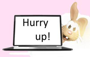 Bunny laptop